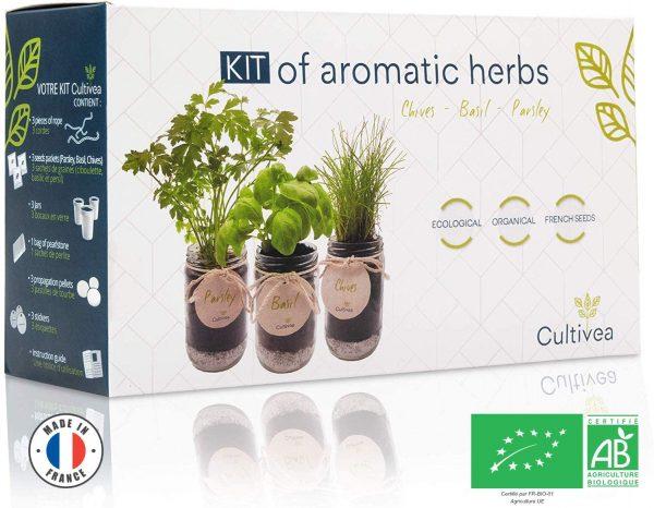 Plantes aromatiques d'intérieur