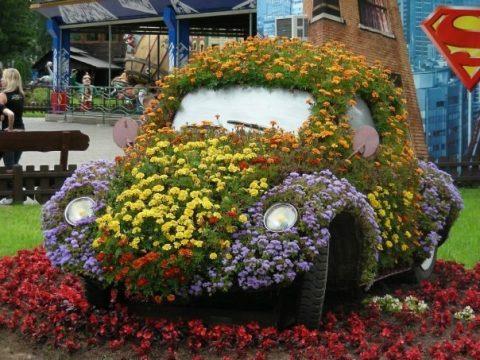 voiture jardin fleurs